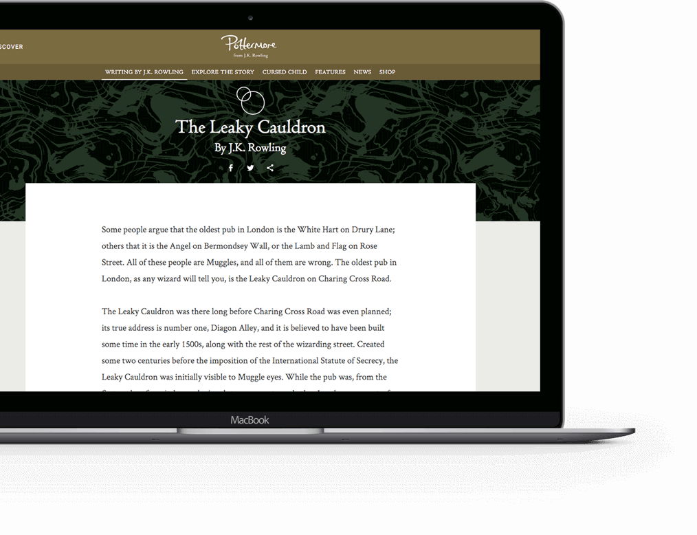 work-pottermore-casestudy-08